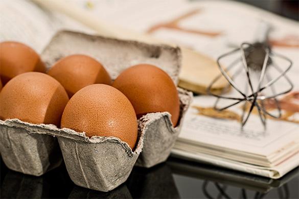 В Ярославской области формируют племенную базу яичного производства. яйца