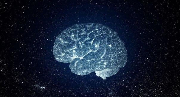 Десять продуктов, которые заставляют мозг работать
