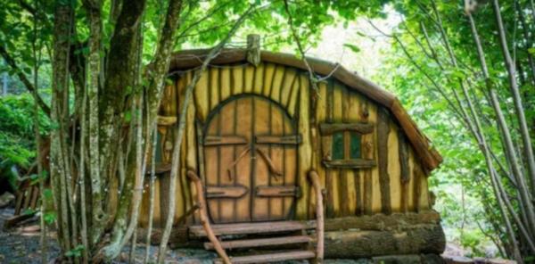В Красной Поляне открылся дивный лес Wonder Land. тематические парки, курорты, развлечения, Красная Поляна