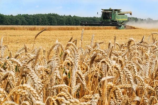 В 2019 году ущерб сельскому хозяйству РФ от ЧС составил 9,5 млрд рублей. экономика, сельское хозяйство