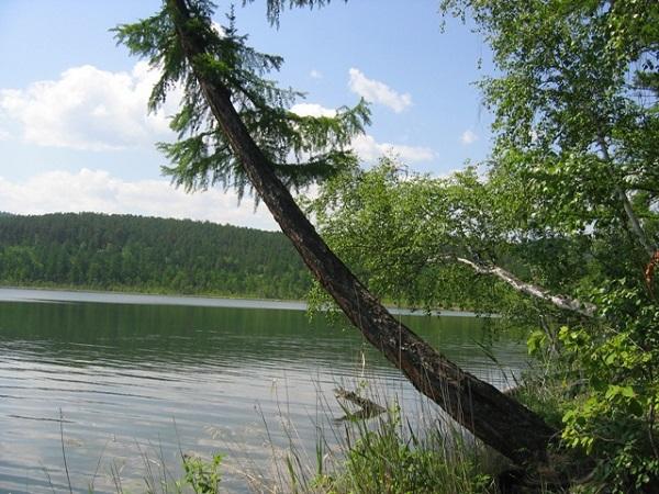 """Государственное озеро """"подарили"""" частному лицу. 26651.jpeg"""