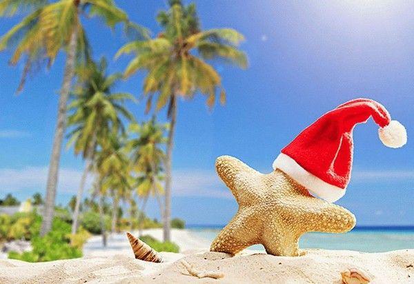 Отдых за границей обойдется жителям России на 40% дороже в новогодние праздники. 26674.jpeg