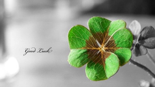 6 факторов удачи
