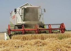Эксперт: Инвестиции саудитов в сельское хозяйство Украины — очередная экспансия ОПЕК
