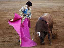 Fitch: испанский рейтинг теряет три ступени