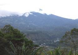 Путешествие во времени: Тихий звон панамского бальбоа