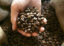 Мир жаждет больше кофе