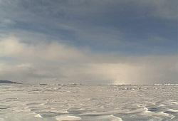 Арктический шельф  пошел по рукам