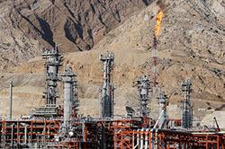 Нефть продолжает дешеветь: цена  за баррель упала до $45,6