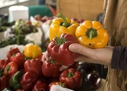 Из первых рук: ЕАЭС создает биржевой рынок сельскохозяйственных товаров