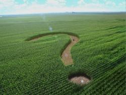 РФ в рамках ВТО защитит тарифы на импорт сахара-сырца