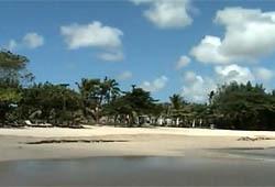 Райский остров  для интеллектуала?