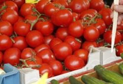 20 тонн томатов из Нидерландов задержали на границе