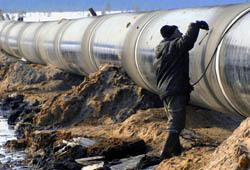 Янукович привезет из Давоса газ