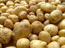 Украинцы ежегодно выбрасывают 7 млн тонн еды