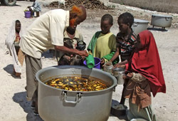 Мировые цены на продовольствие растут