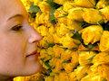 Шипы и колючки цветочного бизнеса