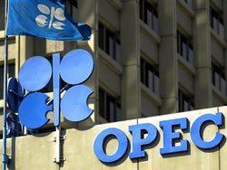 Нефть ОПЕК потеряла $1,11