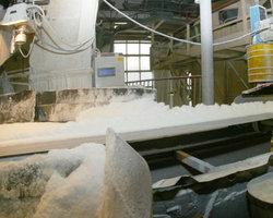 В России могут остановить три завода по производству сахара