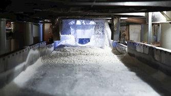 Минсельхоз озвучил меры по стабилизации ситуации на рынке сахара