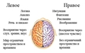 Как стимулировать мозг работать с новой силой!