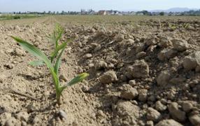 Юргенс променял ИНСОР на агропромышленность