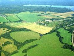 Ивановские власти выделят всем многодетным семьям землю