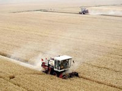 Павел Скурихин: Сибири нужны спецтарифы на перевозку зерна