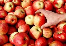 Дефицит продовольствия как способ политического давления