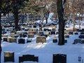 Копать могилы будут частники