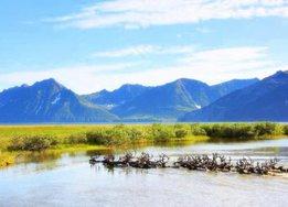 На Чукотке через Анадырский лиман построят канатный аэромост