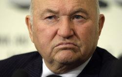 Лужков отказался от нефтехимии в пользу овец