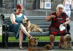 Софинансирование пенсий собрало 100 тысяч приангарцев
