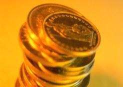 Минфин РФ для поддержки рубля продал  80 млн долларов