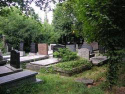 Новое кладбище для знаменитых россиян будет открыто в Москве