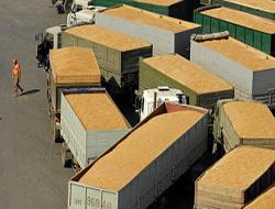 Зерно готовится на экспорт