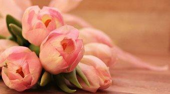 За год цветы в России подорожали в два раза