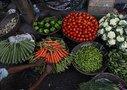 Михаил Карпов: Китайские продукты надо брать под контроль