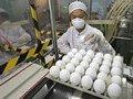 Ущерба от запрета на транзит турецких яиц не будет