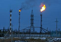 Всемирный фонд дикой природы не доволен сделкой  Роснефти  с ExxonMobil