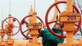 Предложения из США лишь укрепили решение греческого министра ратовать за газопровод из России